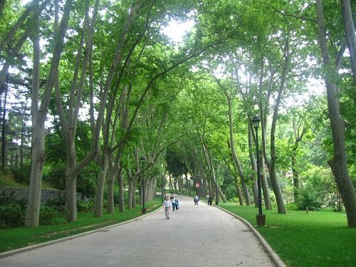 İstanbul Gülhane Parkı