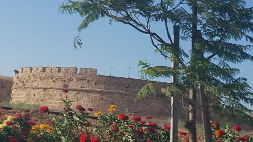 Kıbrıs, Gazimağusa